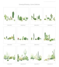 This listing is for your choice of any ONE 8x10 OR 8x11 Cactus Watercolor print, showing a selection of 12-piece cactus from my Cactus Watercolor Painting series.  - Size 8x10 OR 8x11 by your choice - Printed on 8.25x11.75, 230gm, Daler-Rowney acid free watercolor paper - Arranged at the center of the paper, and leaving enough space for framing - Hand signed with pencil on the front  Perfect art piece for modern and minimal style home decor.  This listing is for ONE print only. Please view…