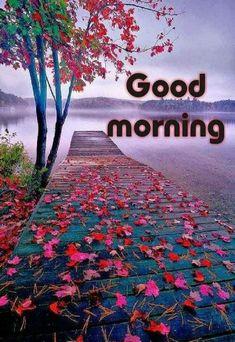 🌞good morning🌞 - @ 52298897 sharechat garde good morning # da hafodt gmg and Good Morning Motivation, Good Morning Prayer, Good Morning My Love, Good Morning Picture, Good Morning Friends, Morning Prayers, Morning Pictures, Good Morning Wishes, Good Morning Quotes