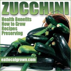 Zucchini is chock full of nutrients! And it's so versatile- check out this great zucchini information and some great zucchini recipes...