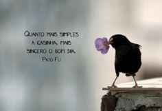 """""""Quando mais simples a casinha, mais sincero o bom dia."""" ~ Pato Fu http://vidaminimalista.com #simples #sincero #bom dia"""