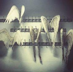 Vintage Angel pageant wings Via axel_de_ferte IG