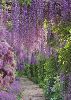 Harpur Garden, Uk by floquilter, via Flickr
