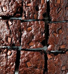you've never added zucchini to your baked goods drop everything you are doing and do it now! These Zucchini Brownies are unbelievably moist and rich. Chocolate Zucchini Brownies, Vegan Brownie, Brownie Recipes, Chocolate Recipes, Zuchinni Brownies, Chocolate Lovers, Homemade Brownies, Best Brownies, Fudgy Brownies