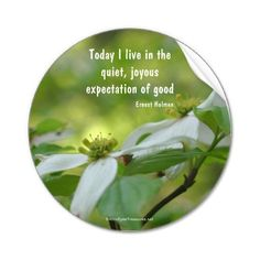 """Today I live in the quiet, joyous expectations of good."" ~Ernest Holmes"