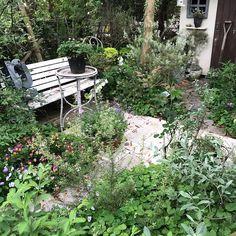 ・ *my garden* ・ *おはようございます* ・ バラが散り始め落ち花…何とも寂しい… そのかわり紫陽花がぐんぐん大きくなってきて�� 嬉しいような寂しいような複雑な気分❁︎ ・ よい週末を… ・ *・゜゚・*:.。..。.:*・・*:.。. .。.:*・゜゚・* ・ #garden#flowerslovers#gardening#home#instagarden#instapic#gardenpic#nature#fleur#flower#natural#flowerstagram#flowergarden#hydrangea#ガーデニング#ガーデナー#ガーデン#花#暮らし#ナチュラルガーデン#マイガーデン#庭作り#ナチュラル#庭#花フレンド#花のある暮らし#ザ花部#はなまっぷ#庭いじり#紫陽花 http://gelinshop.com/ipost/1524352062250190182/?code=BUnlh_PDoVm