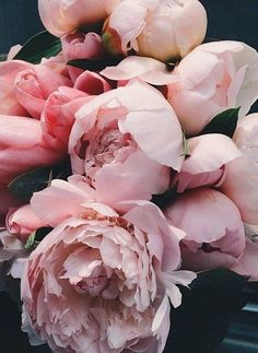 Ideas for flowers vintage bouquet wedding ideas My Flower, Fresh Flowers, Pink Flowers, Beautiful Flowers, Flower Diy, Peony Flower, Cactus Flower, Exotic Flowers, Yellow Roses
