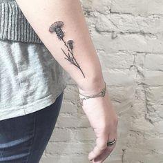 #inked #minimal #minimaltattoo #tattooartist #tattooed #blxckink #blackwork #botanical #blacktattoos #blacktattoo #blackwork #blacktattooart #blacktattooing #annabravo #amazinkink #wowtattoo #wild #wow #wildflowerstattoo #wildflowers #thistle#thistletattoo #art