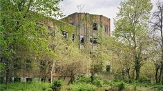 BBC News - Ruins on New York's abandoned island reclaimed by nature