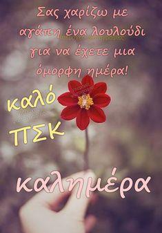 Good Morning, Quotes, Decor, Buen Dia, Quotations, Decoration, Bonjour, Decorating, Good Morning Wishes