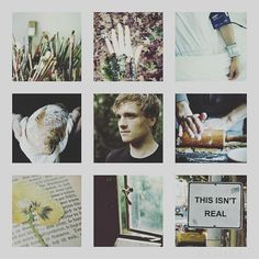 "21 Likes, 3 Comments - team Ravenclaw | team Peeta (@_x_katniss_x_) on Instagram: ""Peeta Mellark. . YEEEES! TOMORROW I GO TO BEAUTY AND THE BEAST WITH @_x_gale_x_ !!!!!!! I'M SO…"""