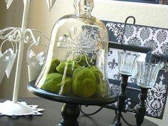 Love glass cloches.