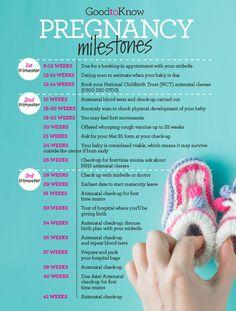 Pregnancy Calendar, Pregnancy Tips, Pregnancy Symptoms By Week, First Time Pregnancy, Pregnancy Checklist, Pregnancy Belly, Pregnancy Journal, Pregnancy Workout, Pregnancy By Month