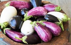 To succeed with eggplants, you'll need steadily warm growing conditions for at least three months. Eggplants growing in cold soil or exposed to chilly weather will potentially suffer from insect and disease problems. Roasted Tomatoes, Roasted Vegetables, Growing Vegetables, Moussaka, Ratatouille, Growing Eggplant, Vegetable Dips, Natural Cancer Cures, Kitchens