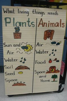 Task Shakti - A Earn Get Problem Plants And Animals Needs Anchor Chart Kindergarten Science And Soci First Grade Science, Primary Science, Preschool Science, Elementary Science, Science Classroom, Teaching Science, Science Activities, Science Experiments, Science Ideas