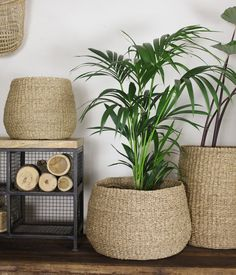 The natural colour of this woven seagrass basket provides the perfect backdrop for indoor plants. Diy Home Crafts, Diy Crafts To Sell, Diy Home Decor, House Plants Decor, Plant Decor, Diy Bedroom Decor, Living Room Decor, Home Decor Baskets, Aesthetic Room Decor