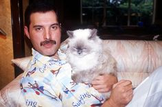 Queen frontman Freddie Mercury so loved his feline friends that he dedicated one of the last songs he ever wrote, Delilah, from the album Innuendo, to this furry friend. Queen Band, I Love Cats, Crazy Cats, Maurice Careme, Celebrities With Cats, Celebs, We Will Rock You, Queen Freddie Mercury, Freddie Mercury Teeth