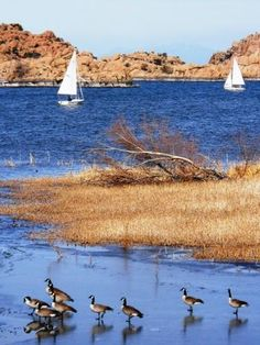 Sailing on Watson Lake, Prescott, Arizona~ Right down the road from where I live~ T.B.