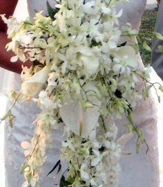 White Orchids & Anthuriums Cascading Bouquet