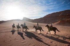 Cabalgata en pleno desierto de Atacama , el mas Arido