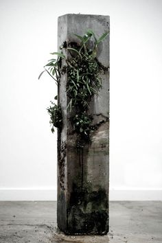 The Remaining Sculptures Of Jamie North -animaal