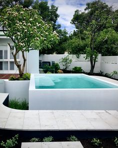 Fully tiled white pool with microcement render design by tristanpeirce Landscape. - Fully tiled white pool with microcement render design by tristanpeirce Landscape Architecture Perth - Backyard Pool Designs, Small Backyard Pools, Small Pools, Swimming Pools Backyard, Swimming Pool Designs, Garden Pool, Pool Landscaping, Pool Fence, Landscape Architecture
