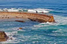 La Jolla Children's Pool, now home to a colony of San Diego harbor seals.