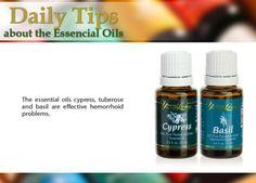 Young Living Basil & Cypress Essential Oils: Hemorrhoid -- youngliving.com  (member #1410186)  bugs62.91@gmail.com