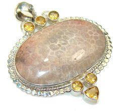 Excellent Fossilized Coral Sterling Silver pendant – Jewelry