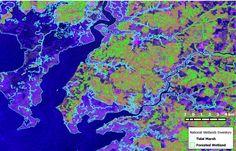 False Color Radar Brian Lamb #environment #sustainability #PhD