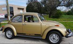 Vintage Cars, Antique Cars, Volkswagon Van, Ranger, Datsun 510, Import Cars, Car Pictures, Car Pics, Cute Cars