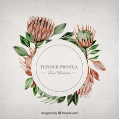 More than a million free vectors, PSD, photos and free icons. Exclusive freebies and all graphic resources that you need for your projects Flower Frame, Flower Art, Protea Flower, Flower Logo, Motif Floral, Illustrations, Grafik Design, Amazing Flowers, Botanical Prints