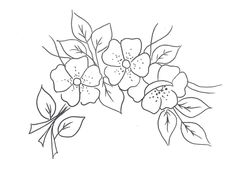 Acrilex • Tintas Artísticas - Galeria de Riscos - Flores