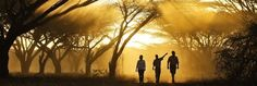 A guided walk in the Kenyan wilderness, Joy's Camp