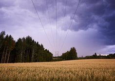 Power lines leading to horizon in stormy countryside landscape image - Power lines in stormy countryside landscape. Wires above a field leading to the vanishing point.