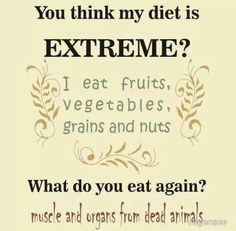 Vegan Quotes Beauteous Pinbbrown On Cats & Critters  Pinterest  Vegans Animal