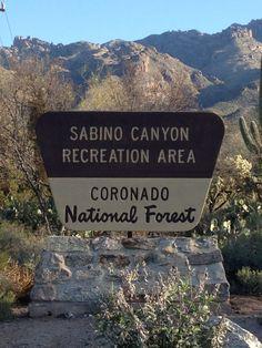 Sabino Canyon Recreation Area in Tucson, AZ www.arizonasunshinetours.com Gr8 photo ops!
