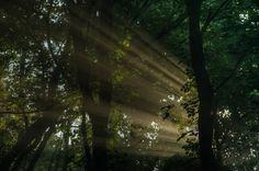 SALE  Morning Light  Fine Art HDR Photograph  by JoshFriedmanPhoto, $42.50