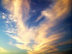 Wing sky