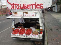 Ponchatoula - strawberry capital of the world - Louisiana