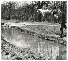Monsieur Folletête (Plitt) et son chien Tupy, Paris, mars 1912 © Jacques Henri Lartigue