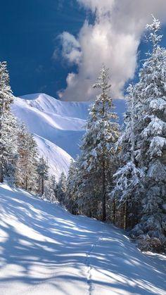 Forever, c'est pour les rêveurs… – Beste Winterbilder Winter Magic, Winter Snow, Winter Pictures, Nature Pictures, Winter Photography, Nature Photography, Winter Wallpaper, Winter Scenery, Snowy Day