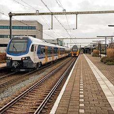 NS Flirt3 2501 te Amersfoort Schothorst, 7 april 2016. #Flirt3 #stadler #eisenbahnfotografie #eisenbahnervomherzen #eisenbahnbilder #rsa_theyards #trb_express #trainstagram #train_nerds #eos70d #canon70d #railwayculture