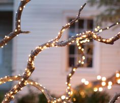 Starry string lights and lanterns make fall festive at terrain.