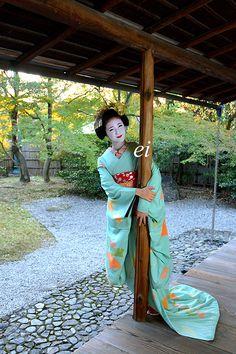 Carefree Maiko, I love her Kimono