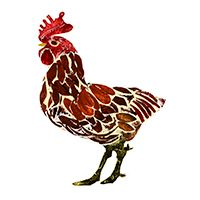 Collagraph | Chicken | Caroline Young Illustration