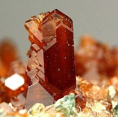 Grossular var hessonite Elongated XX up to 0.5cm with some diopside XX