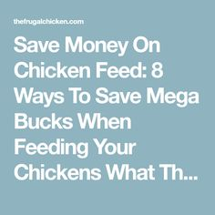 Save Money On Chicken Feed: 8 Ways To Save Mega Bucks When Feeding Your Chickens What The Cluck?! Session 10 [Podcast] | Pampered Chicken Mama