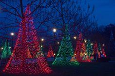 Longwood Gardens at Christmas!