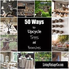 50 Ways to Upcycle Tree Branches and Logs - Living Vintage