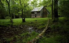 As mais belas casas na floresta 11